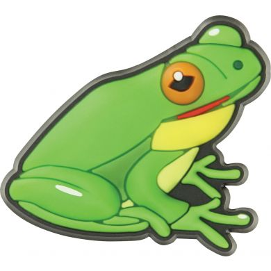 Learn and Grow Frog 2pc Pack